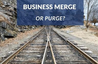 Business Merging Success